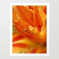 orange in detail Art Print