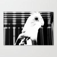 The Parrot John Canvas Print