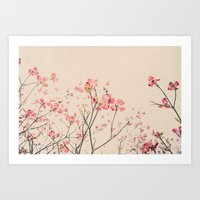 Vintage Spring Botanical, Peaches and Cream -- Pink Dogwood Flowers on Ivory Ground Art Print