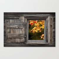 Colorful Fall Leaves viewed through a Barn Window Canvas Print