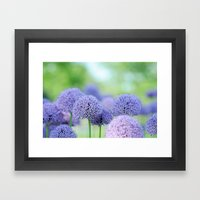 Allium Dream Framed Art Print