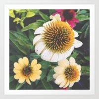 Spring flowers yellow mums Art Print