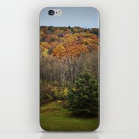 October Mountain Forest iPhone & iPod Skin