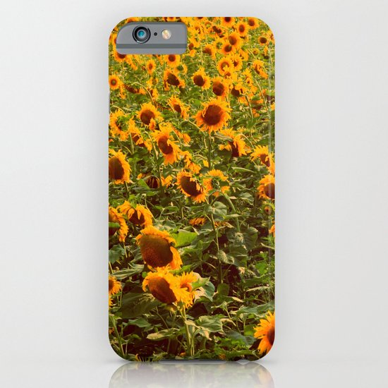Fields of gold iPhone & iPod Case