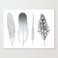 Feathers Trio Canvas Print