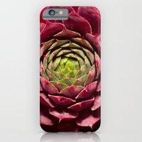 Hard Candy iPhone 6 Slim Case