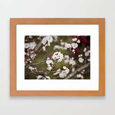Drawn to the Scent of Spring Framed Art Print