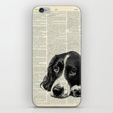 Vintage Springer Spaniel iPhone & iPod Skin
