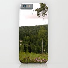 Spring in WaterValley iPhone 6s Slim Case
