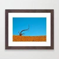 The Tree At Bryce Canyon… Framed Art Print