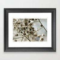 Winter's Silver Jewel Framed Art Print