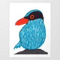 Blue Magpie Art Print