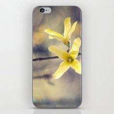 Garden: end of winter iPhone & iPod Skin