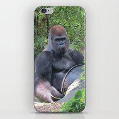 Gorilla Says iPhone & iPod Skin
