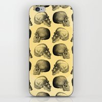 Skulls Pattern iPhone & iPod Skin