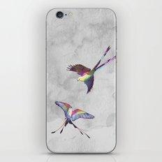 Dreamcatchers iPhone & iPod Skin