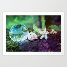 COLLECTION »CRYSTAL BALL« | Forest Beauties Art Print