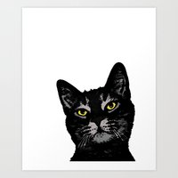Cat Eyes Art Print