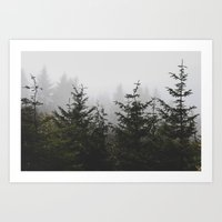 Trees + Fog Art Print