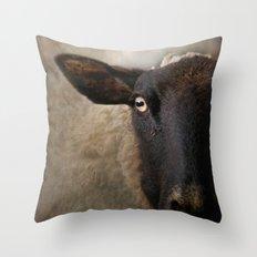 In a sheep's eye Throw Pillow