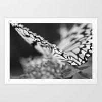 Flutter III  Art Print