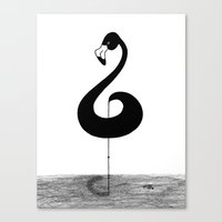 Musical Flamingo Canvas Print