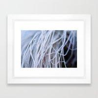 Seaweed? Framed Art Print