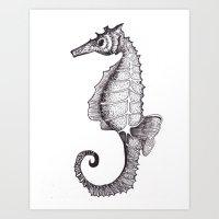 Hippocampus Abdominalis Art Print
