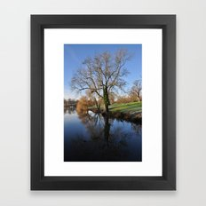 Tree reflection Framed Art Print