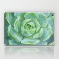 Succulent Harmony Laptop & iPad Skin