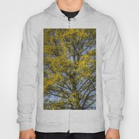 Summer Tree Art Texture Hoody