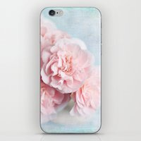 Pink Camellia iPhone & iPod Skin