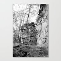 Perched Atop Canvas Print