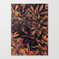 Leaves Evolved 5 Canvas Print