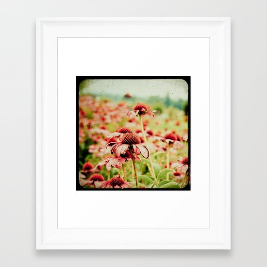 Forgotten Summer Framed Art Print