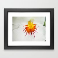 Painted Orchid Framed Art Print