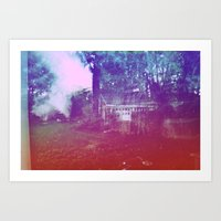 Backyard Art Print