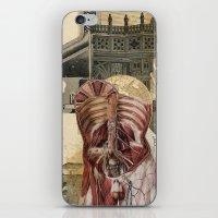 Ehelio iPhone & iPod Skin