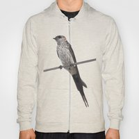 Red-Rumped Swallow Vecto… Hoody