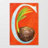 C is for Coconut Canvas Print