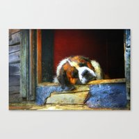 Old Timer II Canvas Print