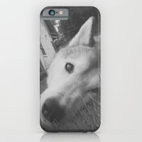 Husky 2 iPhone 6 Slim Case