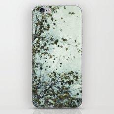 Into the Wind iPhone & iPod Skin