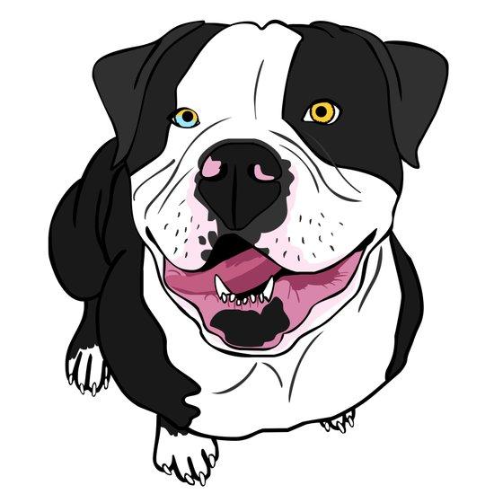Bubba, the American Bulldog Art Print