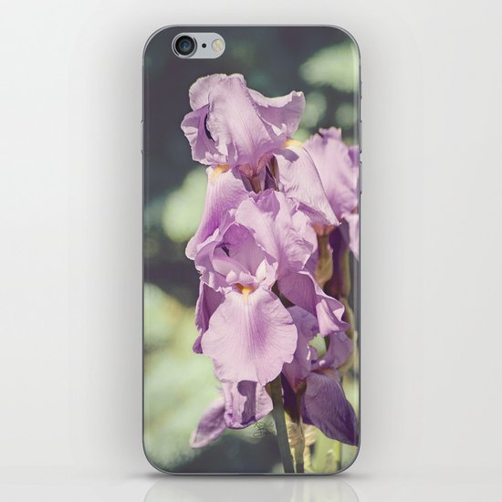 Spring Splendor iPhone & iPod Skin