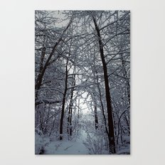 Riders on the Snow. Canvas Print
