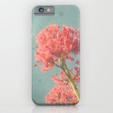 Raspberry Dream Slim Case iPhone 6s