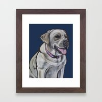 Gracie The Labrador Framed Art Print