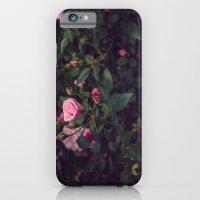 Sweet Summertime III iPhone 6 Slim Case