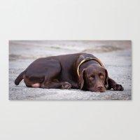 the hound dog Canvas Print